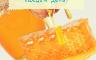 Как правильно есть мед: 10 правил