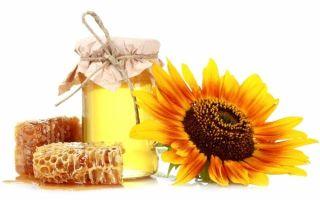 Мед: польза и вред «эликсира жизни»