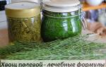 Хвощ полевой – лекарственная сила гомеопатических средств
