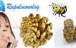 Настойка прополиса от кашля: внутреннее и наружное применение