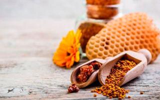Пчелиная пыльца – как принимать и дозировать этот продукт пчеловодства?