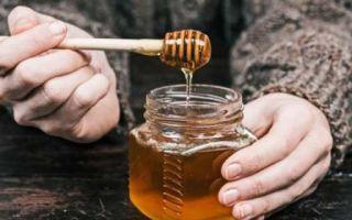 Мед с пыльцой – полезные свойства и показания