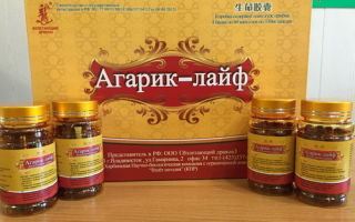 Агарикус: рецепты при различных заболеваниях