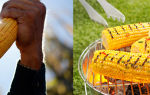 Кукуруза на пару с маслом и травами