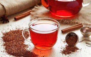 Чай ройбуш — чудо африки на вашем столе