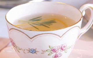 Чай с розмарином — полезные свойства напитка вас приятно удивят