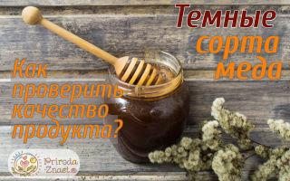 Темный мед – различные сорта и полезные свойства