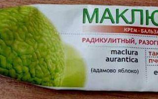 Адамово яблоко маклюра: химический состав и лечебные свойства