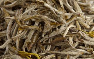 Чай серебряные иглы — чаепитие должно быть вкусным и полезным