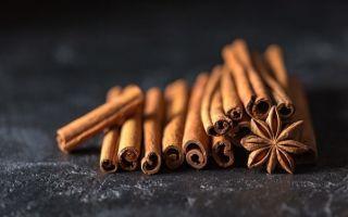 Корица с медом: целебный дуэт для здоровья и стройности