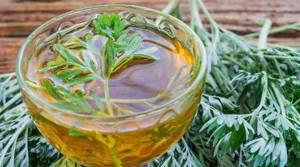 Полынь для похудения — как сбросить вес с помощью целебного растения