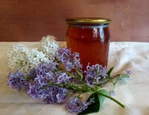 Настойка сирени на водке – применение и правила приготовления