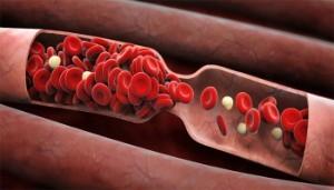 Может ли болеть сердце от мяты: особенности применения