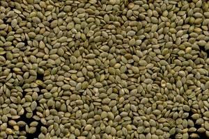 Семена крапивы для потенции: народные рецепты