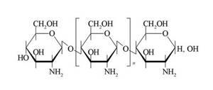Хитозан: эффективность и использование