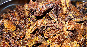 Перга: применение пчелиного хлеба при разных заболеваниях