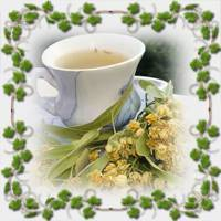 Чай Японская липа – ароматная польза со вкусом
