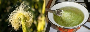 Кукурузные рыльца: показания и правила использования