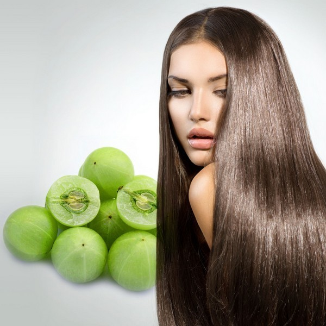 Масло амлы: помощь для волос, применение для роста и укрепления, полезные свойства шампуней и масок