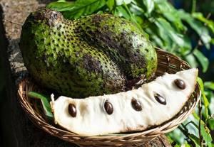 Сок гуанабаны: состав и ценные качества