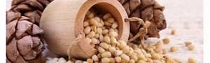 Кедровые орехи: польза и вред, сколько можно и нужно съедать в день, калорийность продукта, его цена