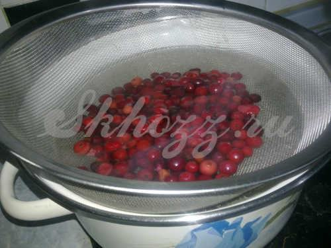 Кисель из клюквы: из свежих и замороженных ягод