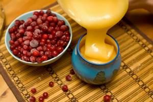 Клюква с медом: полезные свойства и рецепты