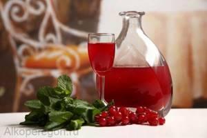Настойка на клюкве: на коньяке, на спирту, клюквенное вино