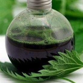 Настойка крапивы: применение и противопоказания, рецепты на водке, отзывы