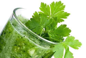 Петрушка — лечебные свойства и противопоказания полезного растения