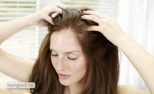 Амла – секреты красоты волос от индийских женщин
