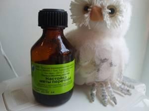 Настойка мяты перечной: рецепт универсального лекарства