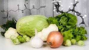 Гамамелис: что это такое, функции антиоксиданта в организме, химическая формула glutathione и где он содержится
