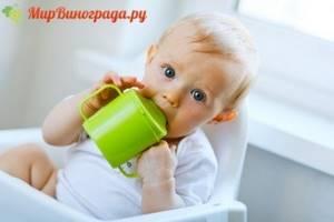 Отвар изюма для малыша: вкусно и полезно