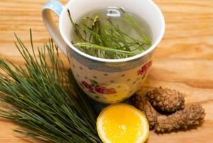 Чай из сосновых иголок: способы применения