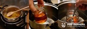 Как растопить мед – мифы и допустимые способы