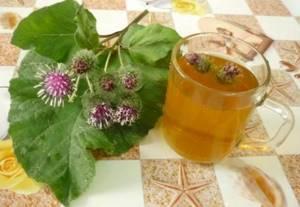 Настойка лопуха: для чего применять и как сделать, средство с добавлением меда и водки, приготовление на спирту