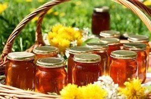 Мед молочай: полезные свойства и качества
