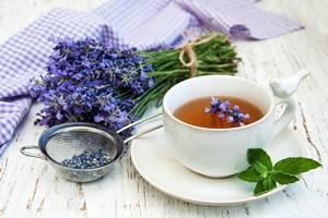Чай с лавандой: полезные свойства, правила и рецепты приготовления, возможные противопоказания