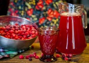 Клюква при простуде — вкусное лечение, рецепты