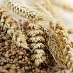 Кисель из овса: рецепт приготовления, какую пользу напиток приносит и можно ли улучшить с его помощью состояние поджелудочной железы