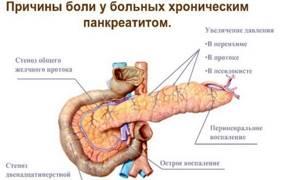 Мед при панкреатите: поможет или навредит?