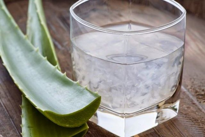 Сок алоэ – применение и правила хранения