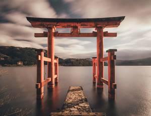 Гречневая лапша – раскрываем секреты долголетия японцев