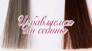 Как избавиться от седых волос: косметические и народные средства