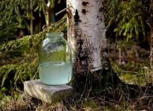 Березовый сок – это не только вкусно, но и полезно