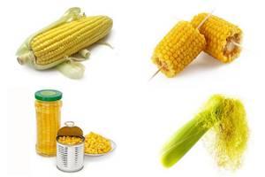 Кукуруза при похудении: правила употребления