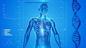 Избыток кальция в организме человека - в чем опасность?