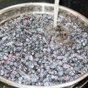 Жимолость с сахаром без варки: секреты приготовления