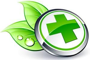 Зверобой: применение для помощи в лечении болезней, инструкция по использованию – как правильно и сколько можно пить